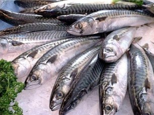 Comer pescado reduce riesgos de padecer diabetes