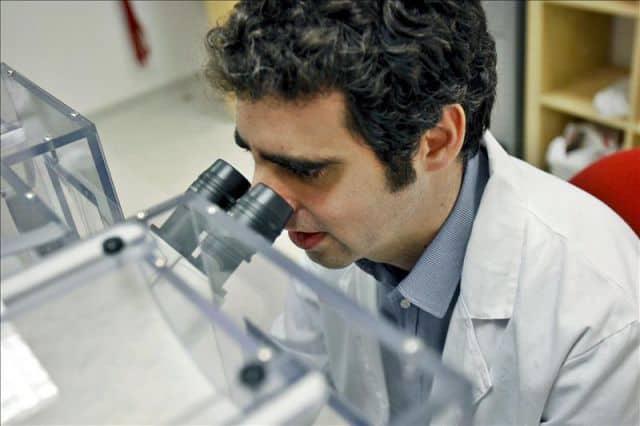 tratamientos de criptomorrea para la diabetes