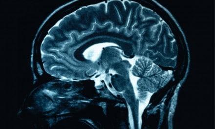 Hallan un receptor cerebral que controla la diabetes