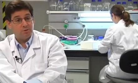 Proyecto andaluz contra la diabetes recibe financiación