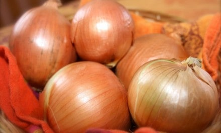 La cebolla una aliada de nuestra salud