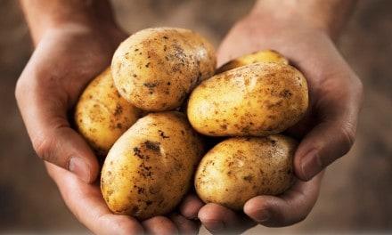 Consumo de patatas y diabetes gestacional ¿relación?