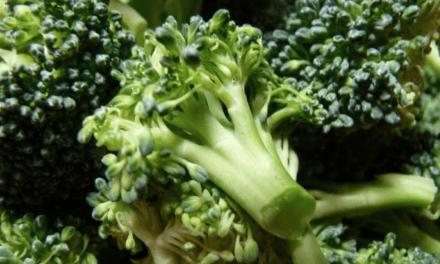 Descubren que el brócoli podría reducir glucemia en diabetes tipo2