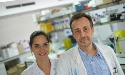 Avanzan en la microbiota intestinal como diana terapéutica para combatir la obesidad