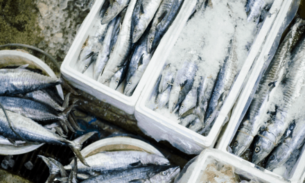 Comer pescado dos veces por semana reduce riesgo cardiovascular