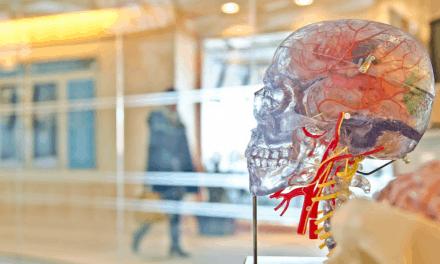 Las personas con diabetes tipo1 tienen una conectividad cerebral distinta