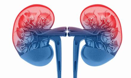 La enfermedad renal en la diabetes tipo 2, a examen