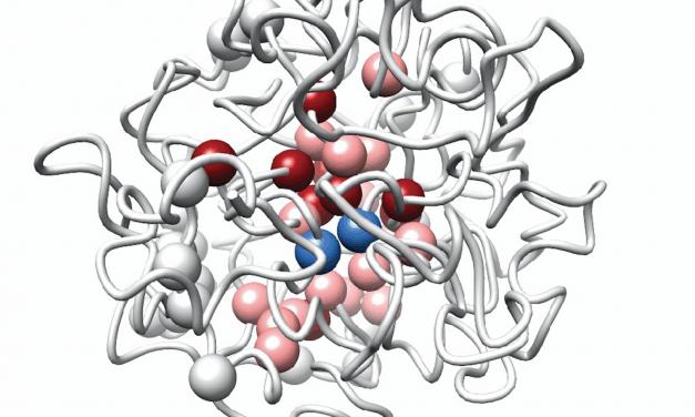 Crean mapa en 3D del genoma para localizar causas de diabetes tipo 2