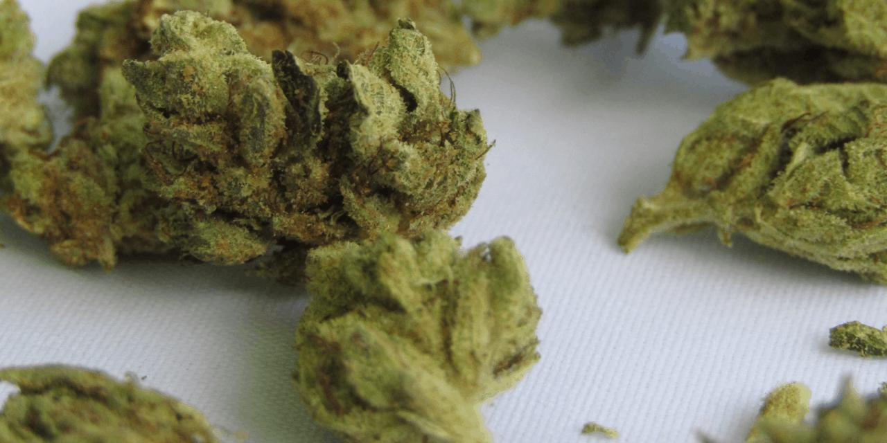 El uso de marihuana podría mejorar la resistencia a la insulina en adultos con obesidad