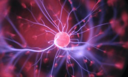 El sistema nervioso podría ser causa en la aparición de diabetes tipo 1